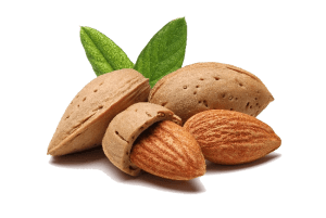 Footer Almond