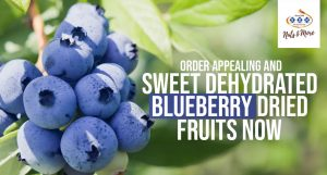 blueberry dried fruit purchase online