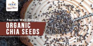 buy organic chia seeds online